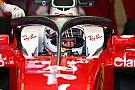Vettel: Halo'yu reddetmek