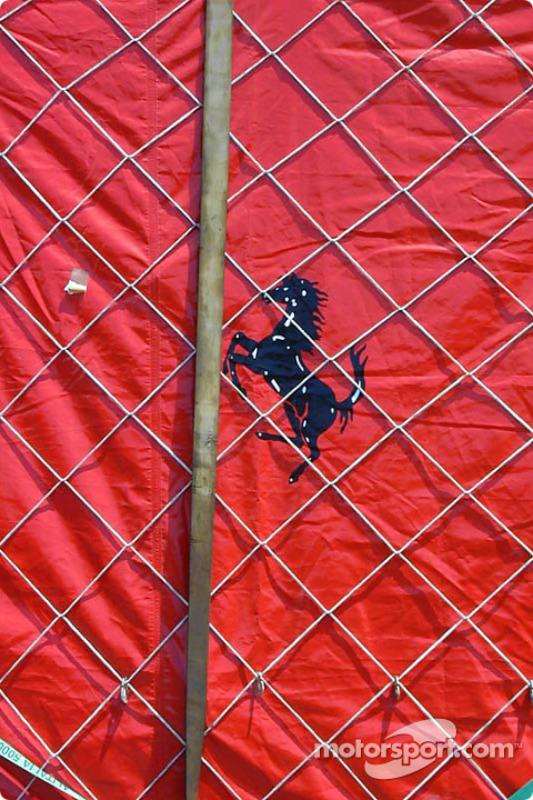 Horse in a net