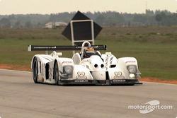 David Brabham, Panoz