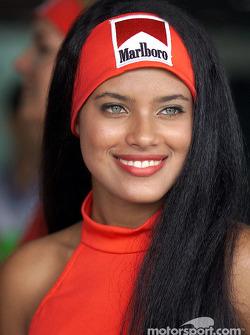 A Brazilian beauty