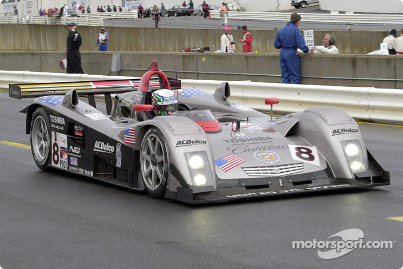 Massimiliano Angelelli in the Cadillac LMP