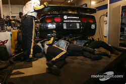 Corvette Racing Gary Pratt work on Corvette-Chevrolet C5 #53