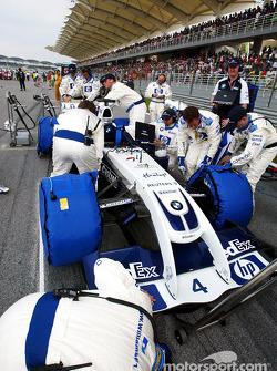 Team Williams gridde