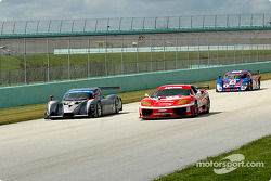 #5 Essex Racing Ford Multimatic: Scott Maxwell, James Gue, #11 JMB Racing USA Ferrari 360GT: Matt Plumb, Maurizio Mediani