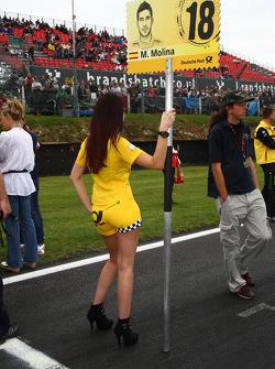 Miguel Molina, Audi Sport Rookie Team Abt, Audi A4 DTM gridgirl
