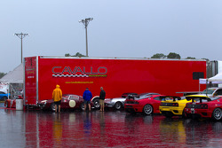 Rain falls on the paddock