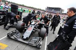 Jenson Button, McLaren MP4-31, op de grid