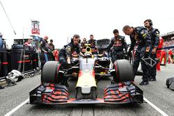 Startaufstellung: Max Verstappen, Red Bull Racing RB12