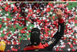 Sieger Will Power, Team Penske, Chevrolet