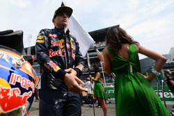 Max Verstappen, Red Bull Racing en la parrilla