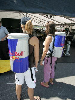 Red Bull girls energize the paddock