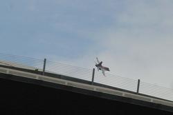 An F-16 buzzes the Pepsi Center