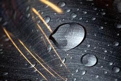 Rain drop artwork