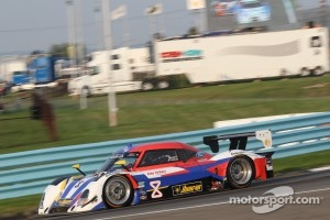 #8 Starworks Motorsport Ford Riley: Ryan Dalziel, Alex Popow