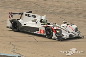 #6 Muscle Milk Pickett Racing HPD ARX-03a: Lucas Luhr, Klaus Graf, Simon Pagenaud