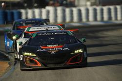 №86 Michael Shank Racing Acura NSX: Освальдо Нери, Джефф Сигал, Том Дайер