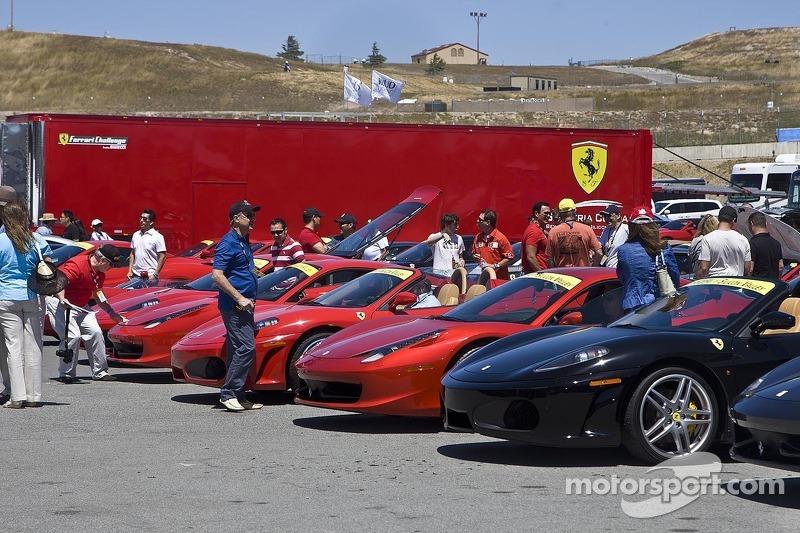 Beautiful Ferraris fill the car park