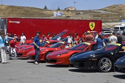 Beautiful Ferraris fill the car park