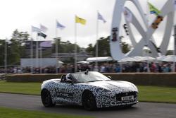 Jaguar parade