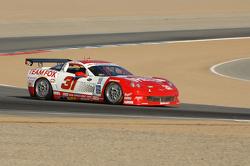 #31 Marsh Racing Whelen Engineering Corvette:  Eric Curran, Boris Said