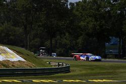 #66 Ford Performance Chip Ganassi Racing Ford GT: Джоі Хенд, Дірк Мюллер