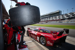 Pit stop for #99 GAINSCO/Bob Stallings Racing Corvette DP: Jon Fogarty, Alex Gurney, Memo Gidley, Darren Law