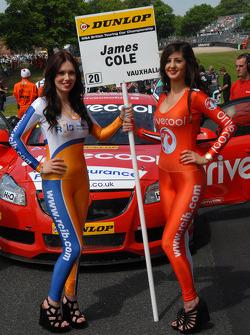 RCIB Insurance/Drive Cool Grid Girl