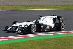 Ник Хайдфельд, BMW Sauber C29