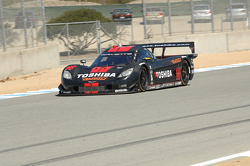 #10 Wayne Taylor Racing Corvette DP: Max Angelelli, Jordan Taylor