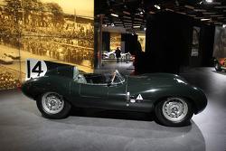 Спеціальна виставка Ле-Мана, Jaguar D-Type