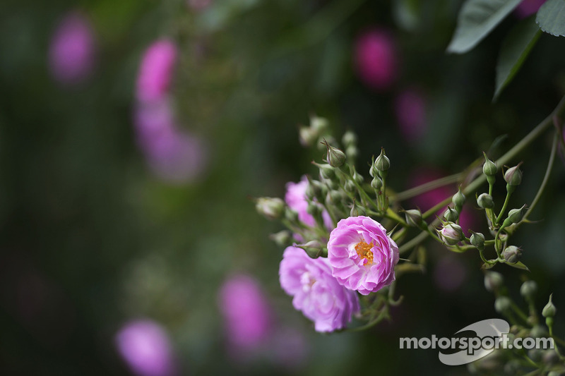 Pist flora.