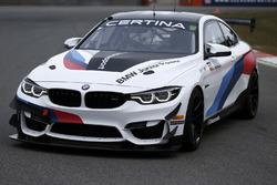 Beitske Visser BMW GT4 aankondiging