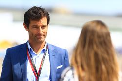 Mark Webber, piloto de carreras australiano