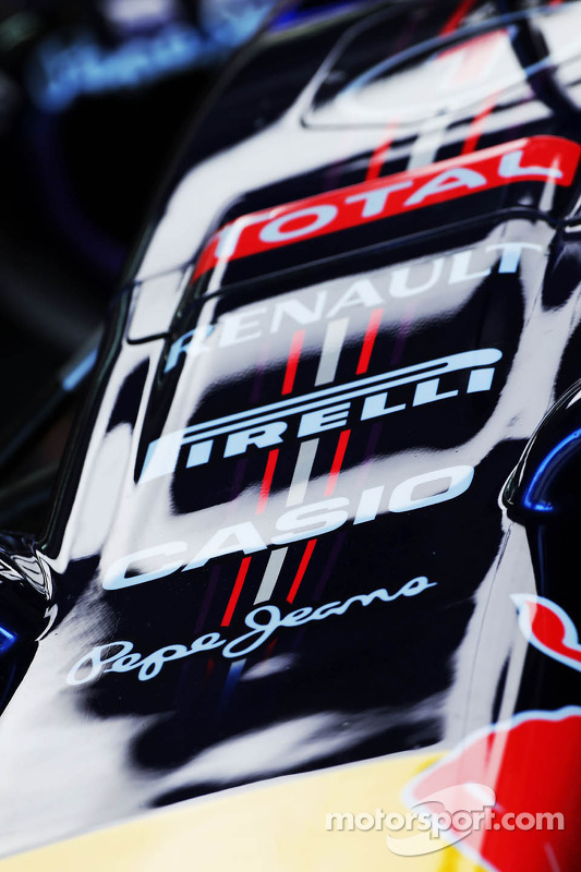 Red Bull Racing RB10: Nase