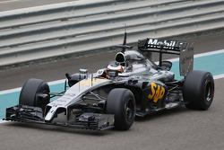 Стоффель Вандорн, McLaren MP4-29H Honda