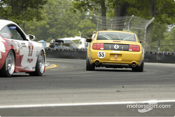 #55 Multimatic Motorsports Mustang GT: Scott Maxwell, David Empringham