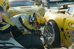 #3 Corvette Racing Corvette C6-R: Ron Fellows, Johnny O'Connell, Max Papis