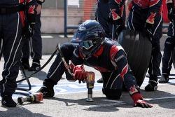 Scuderia Toro Rosso pitcrew