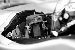 Steering wheel of Rinaldo Capello