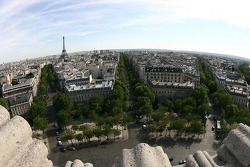 A view from atop the Arc de Triomphe: looking South towards the Eiffel Tower