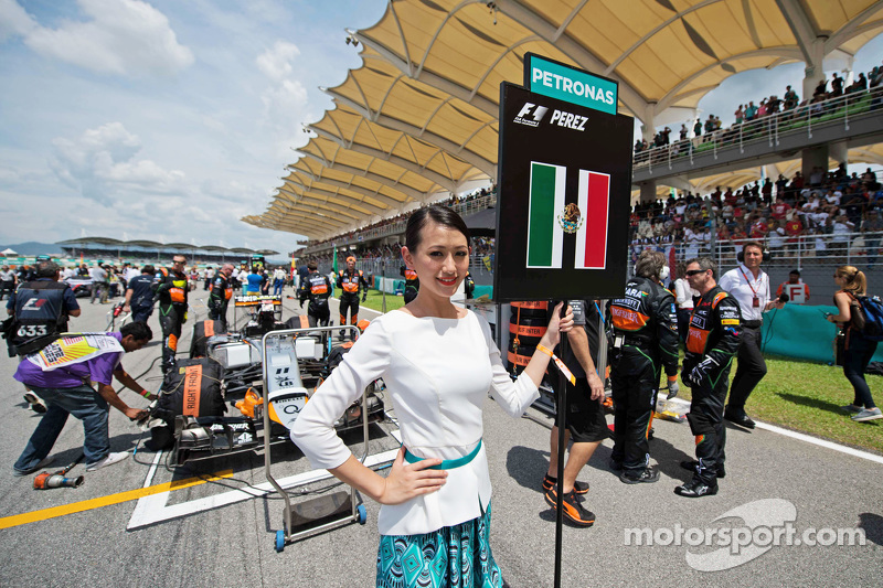 Chica en la parrilla de Sergio Perez, Sahara Force India F1