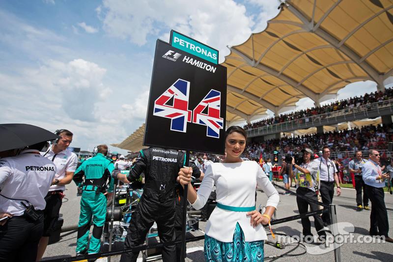 Chica de parrilla para Lewis Hamilton, Mercedes AMG F1