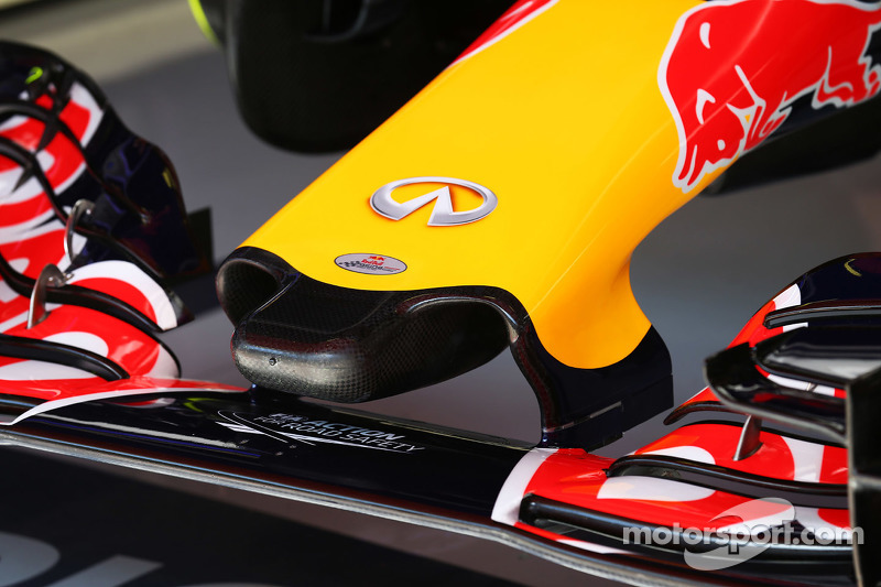 Red Bull Racing RB11 nosecone