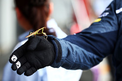 A Praying Mantis invites himself to the Red Bull Racing бокси