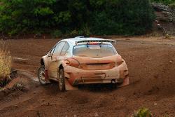 Крейг Брин, Peugeot 208 R5