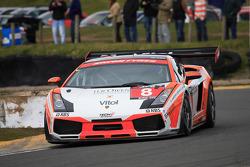Lamborghini Gallardo race 2