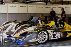 Embassy Racing, WF01 – Zytek