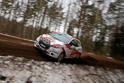 Vaslily Gryazin und Dmitry Lebedik, Peugeot 208 R2