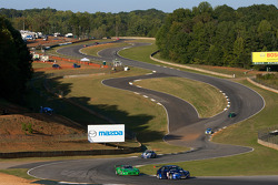 Practice action in the Esses