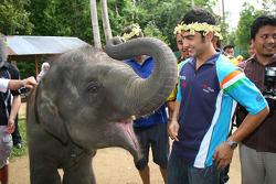 Armaan Ebrahim, driver of A1 Team India at the Gandah Elephant Orphanage